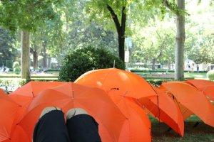 Los paraguas naranjas simbolizan el fuego, y en el Proyecto Fahrenheit 451 (las personas libro) los utilizamos en nuestras narraciones.